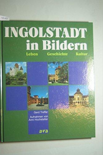 Ingolstadt in Bildern: Leben, Geschichte, Kultur (German Edition): Gerd Treffer