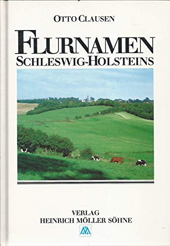 9783875500776: Flurnamen Schleswig-Holsteins (German Edition)