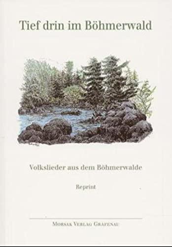 9783875535372: Tief drin im Böhmerwald