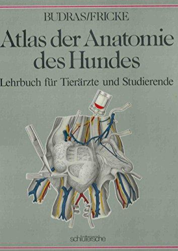 atlas der anatomie des von klaus dieter - ZVAB