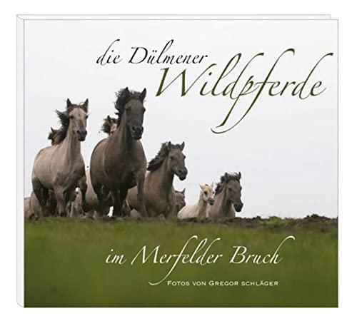 9783877167083: Die Dülmener Wildpferde in Merfelder Bruch
