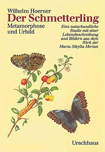 Der Schmetterling: Wilhelm Hoerner