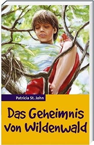 9783879820566: Das Geheimnis von Wildenwald (Livre en allemand)