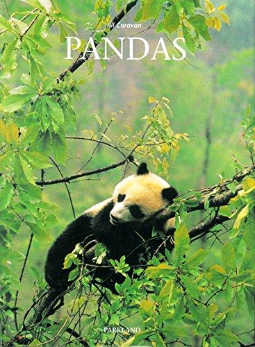 9783880598492: Pandas
