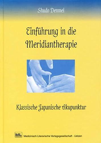 Einführung in die Meridiantherapie: Shudo Denmei