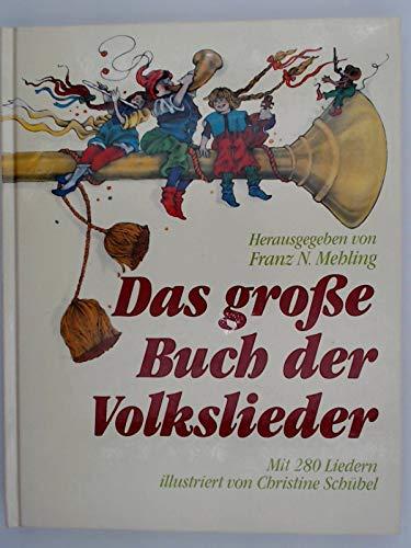 9783881999403: Buch der Volkslieder