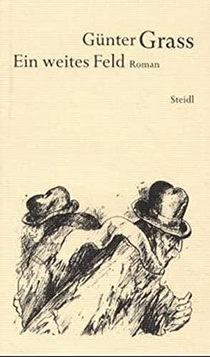 Werkausgabe. Bd. 13., Ein weites Feld : Grass