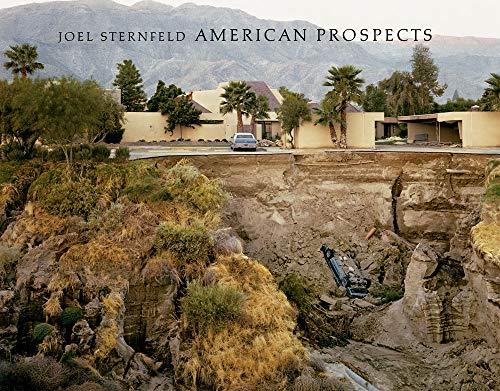 9783882439151: Joel Sternfeld: American Prospects