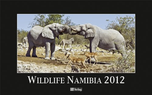 9783882556230: Wildlife Namibia 2012