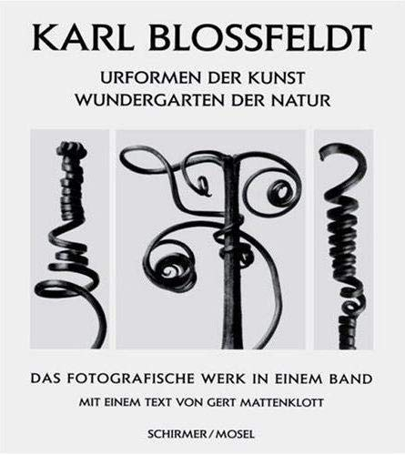 9783888147180: Art Forms in Nature (German Edition)