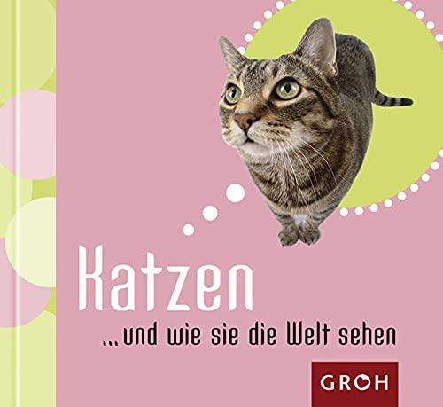 9783890084480: Katzen... und wie sie die Welt sehen