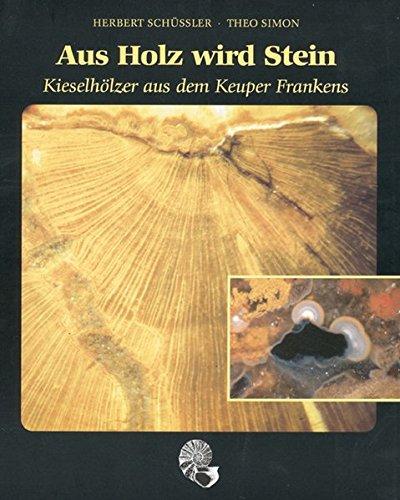 9783890890913: Aus Holz wird Stein: Kieselholzer aus dem Keuper Frankens