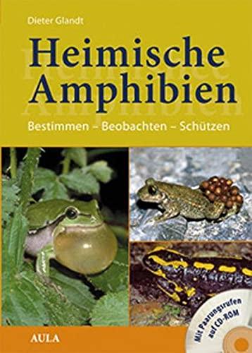 9783891047538: Heimische Amphibien: Bestimmen - Beobachten - Schützen