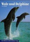 9783892349990: Wale und Delphine