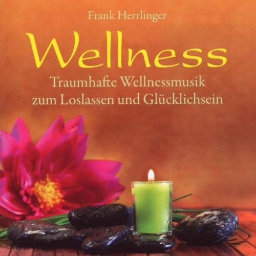 9783893212491: Wellness