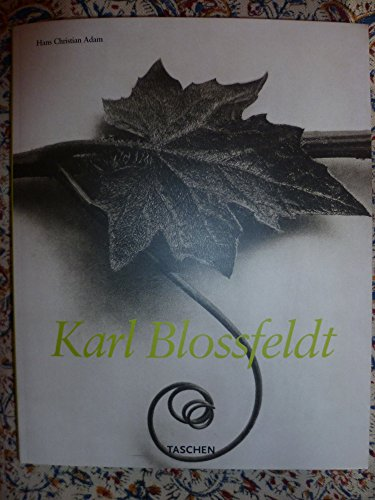 9783893226382: Karl Blossfeldt: Fotografie (German Edition)