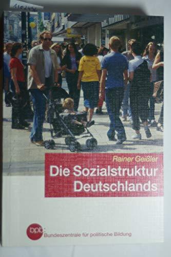 9783893314607: Die Sozialstruktur Deutschlands