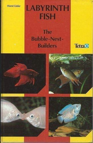 9783893561377: Labyrinth Fish: The Bubble Nest Builders