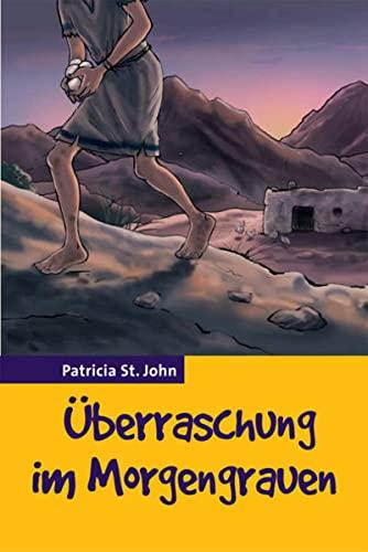 9783893975600: �berraschung im Morgengrauen: Und andere Geschichten (Livre en allemand)