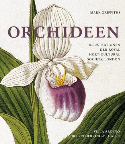9783894055271: Orchideen