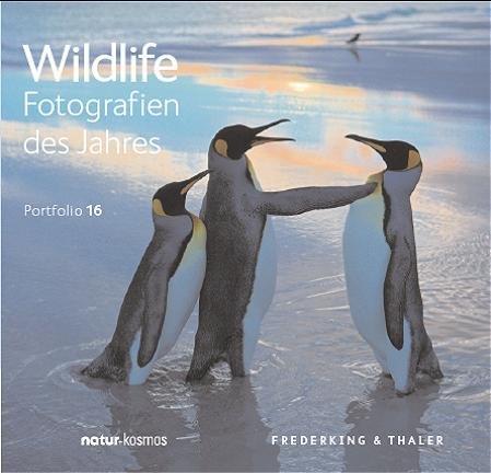 Wildlife Fotografien des Jahres Portfolio 16
