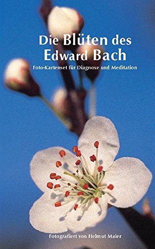 9783894167882: Die Blüten des Edward Bach: Foto-Kartenset für Diagnose und Meditation