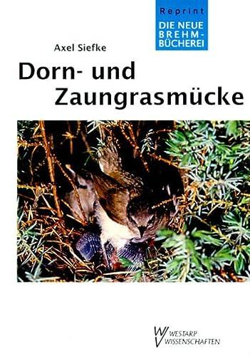Dorn- und Zaungrasmücke.: Ornithologie Vogelkunde - Siefke, A.