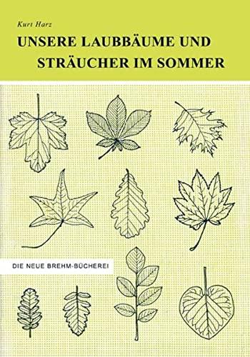 Unsere Laubbäume und Sträucher im Sommer: Das Buch der 1000 Bäume und Sträucher - Ein ...