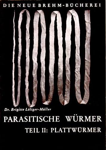 Bewusstsein von Brigitte MüllerBuchZustand gut Lichtkörper