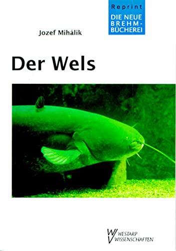 9783894326555: WELS SILURUS GLANIS (German Edition)