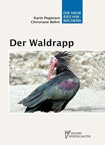 Der Waldrapp: Ein Glatzkopf im Aufwind (Paperback): Karin Pegoraro, Christiane Böhm