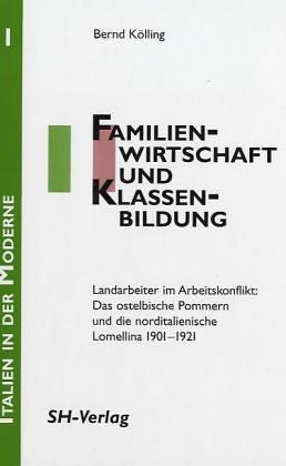 9783894980191: Familienwirtschaft und Klassenbildung