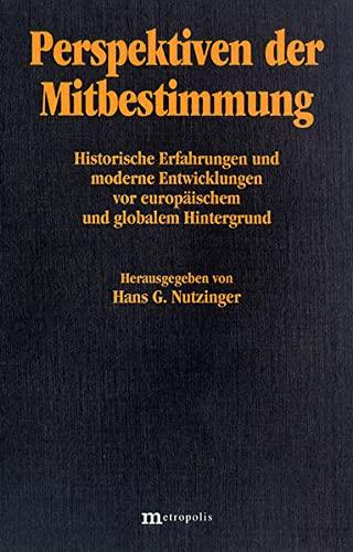 9783895181993: Perspektiven Der Mitbestimmung: Historische Erfahrungen Und Moderne Entwicklungen Vor Europaischem Und Globalem Hintergrund