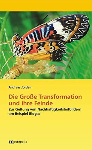 9783895189289: Die Große Transformation und ihre Feinde: Zur Geltung von Nachhaltigkeitsleitbildern am Beispiel Biogas