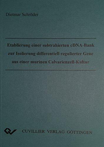 Etablierung einer subtrahierten cDNA-Bank zur Isolierung differentiell regulierter Gene aus einer ...