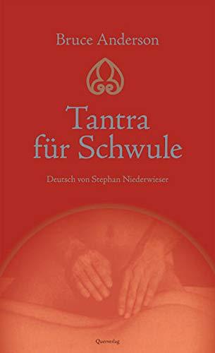9783896561084: Tantra für Schwule