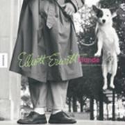 Hunde: Elliott Erwitt