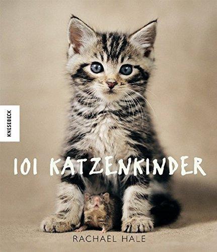 9783896603883: 101 Katzenkinder