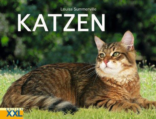 9783897363410: Katzen.