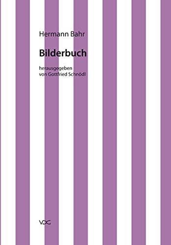 9783897396760: Kritische Schriften in Einzelausgaben / Bilderbuch: Kritische Schriften in Einzelausgaben, Band 15