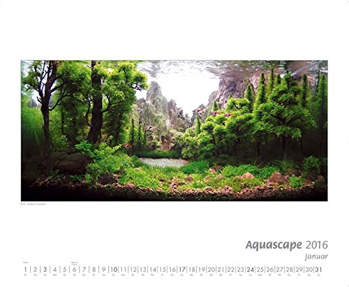 9783897452367: Kalender AQUASCAPE 2016