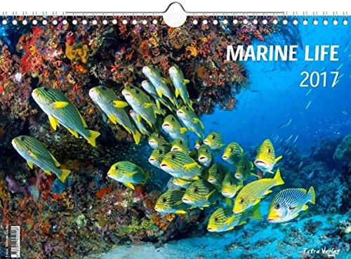 9783897452558: Marine Life 2017 (Meerwasser Wandkalender 2017 DIN A3 quer)