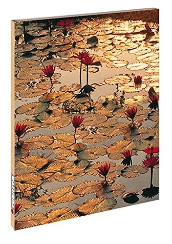 9783897896871: Lotus Pond