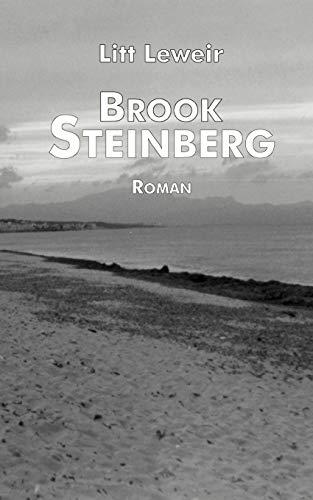 9783898113809: Brook Steinberg