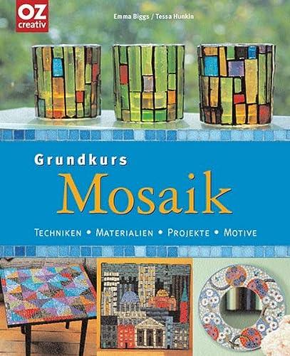 9783898587761: Grundkurs Mosaik: Techniken, Materialien, Projekte, Motive