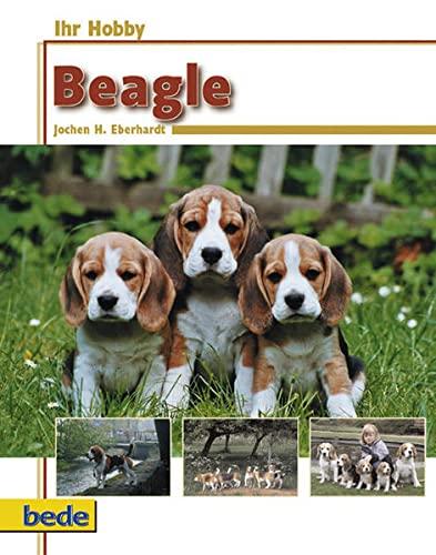 Ihr Hobby Beagle: Jochen H. Eberhardt