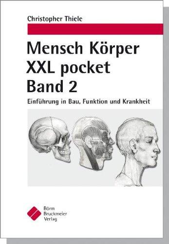 Mensch Körper XXL pocket Band 2: Einführung in Bau, Funktion und Krankheit - Thiele, Christopher