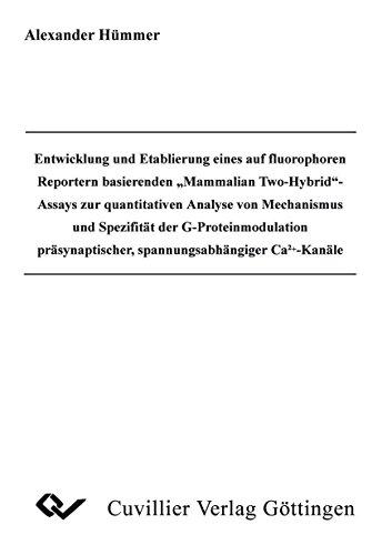 Entwicklung und Etablierung eines auf flourophoren Reportern