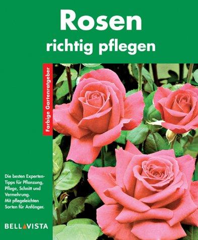 9783898936576: Rosen richtig pflegen