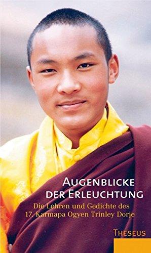 9783899012835: Augenblicke der Erleuchtung: Die Lehren und Gedichte des 17. Karmapa Ogyen Trinley Dorje